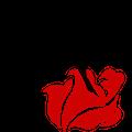 玫瑰团队LOGO